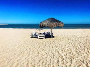 palapa-on-beach